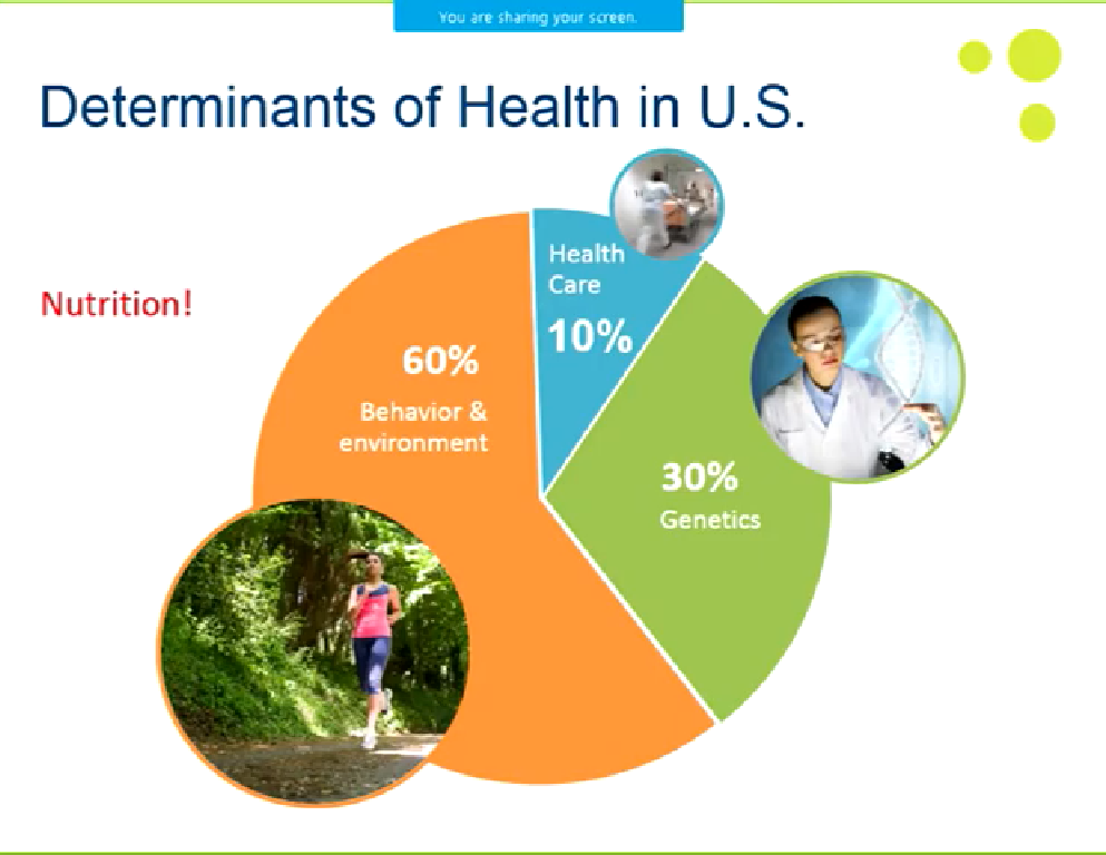 determinants of health USA.png